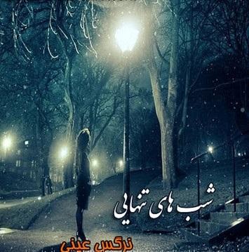 دانلود رمان شب های تنهایی