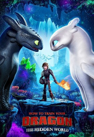 دانلود فیلم How to Train Your Dragon The Hidden World 2019