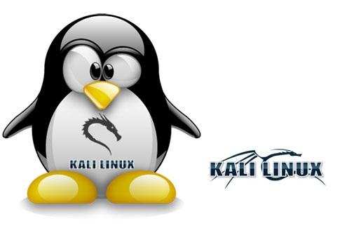 دانلود سیستم عامل کالی لینوکس Kali Linux 2019.2