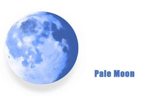 دانلود Pale Moon v28.6 مرورگر قدرتمند و بسیار سریع