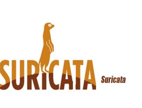 دانلود Suricata 4.1.2 ابزار تست نفوذ شبکه