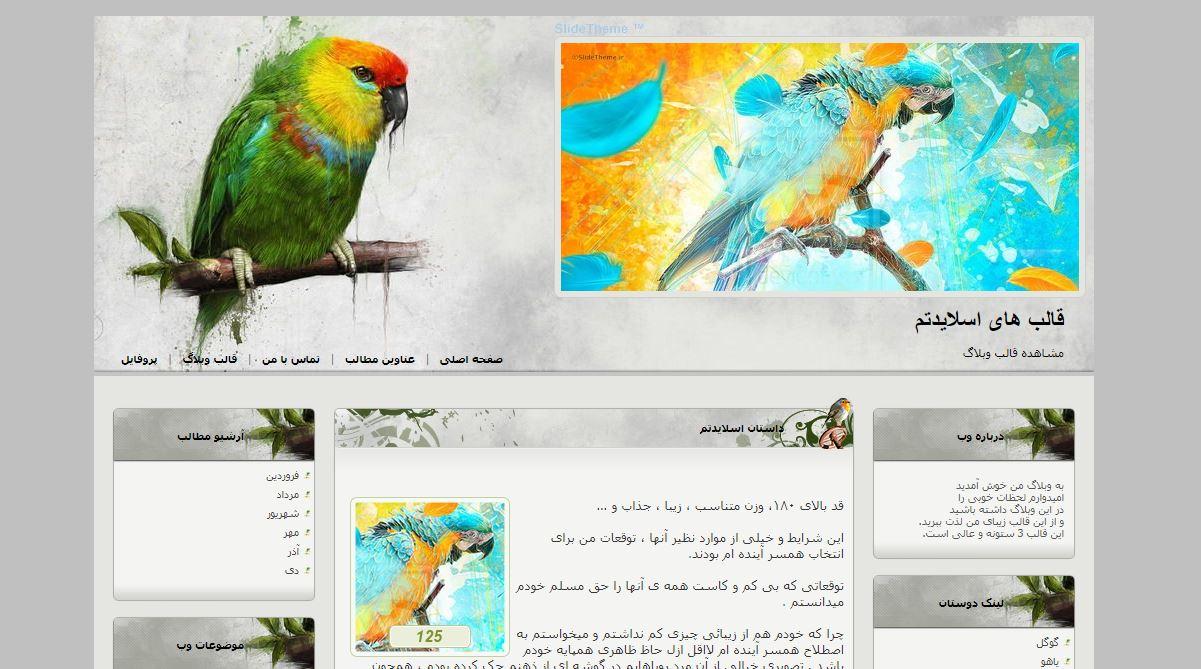 قالب وبلاگ پرنده رنگارنگ برای رزبلاگ