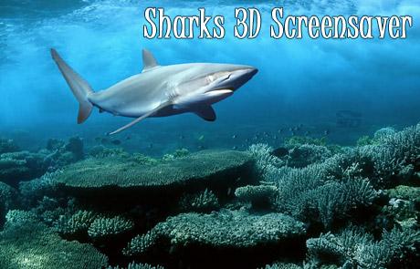 اسکرین سیور 3 بعدی کوسه ها - Sharks 3D Screensaver