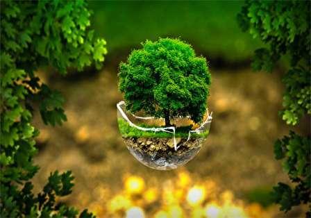 عکسهای زیبا | عکس گل | عکس طبیعت ۱۴۰۰ و ۲۰۲۱